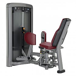 Life Fitness Insignia Hip Adduction