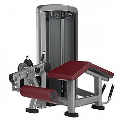 Life Fitness Insignia Seated Leg Curl